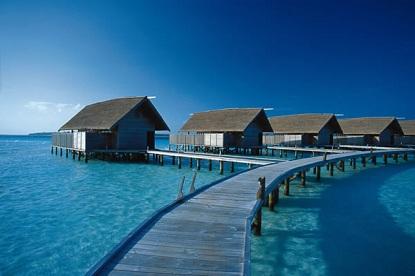 cocoa island maldives honeymoon