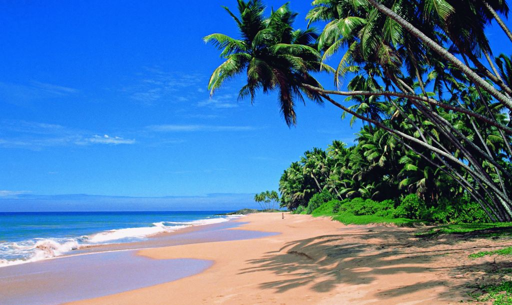 Best beach holiday destinations in india